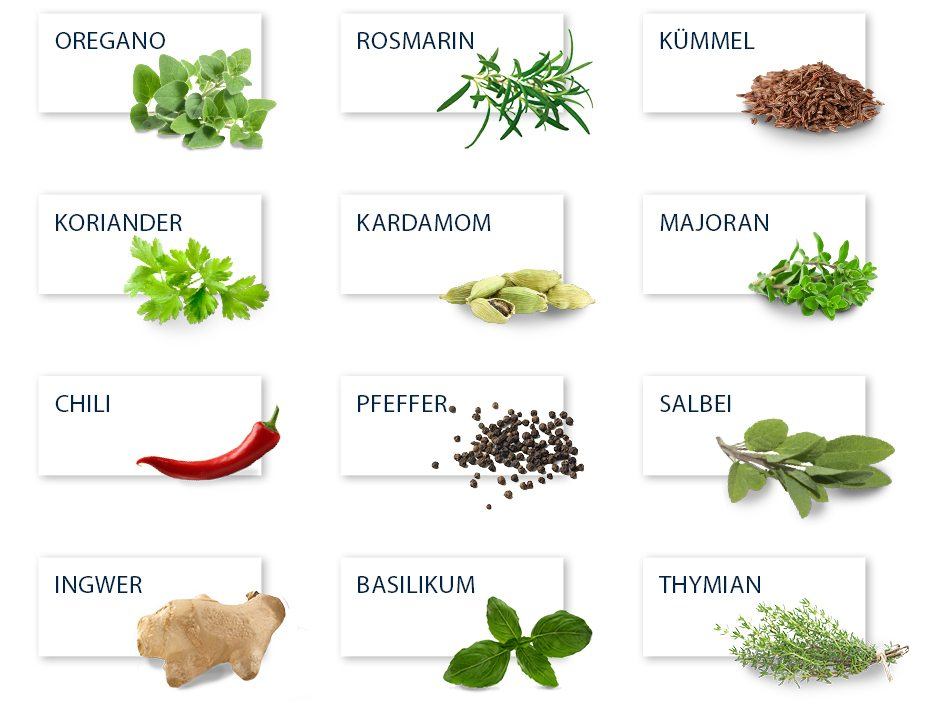 acc-trends-herb-spice-extracts-1-1