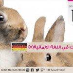 الحيوانات في اللغة الالمانية مع النطق (5)