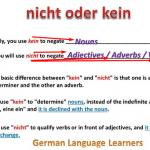 محادثة باللغة الالمانية مترجمة بالعربي – نفي الجمل