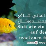 تعبير الماني شائع مع ترجمته ومثال Zwei Fliegen mit einer Klappe schlagen Sich wie ein Fisch auf dem 1 1 2 تعلم اللغة الالمانية