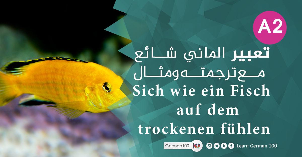 تعبير الماني شائع مع ترجمته ومثال Sich wie ein Fisch auf dem trockenen fühlen Sich wie ein Fisch auf dem 1 1 5 تعلم اللغة الالمانية