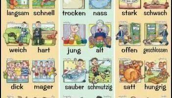 تعلم الصفات الشائعة وعكوسها في اللغة الالمانية